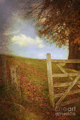 Autumn Leaf Photograph - Open Country Gate by Amanda Elwell