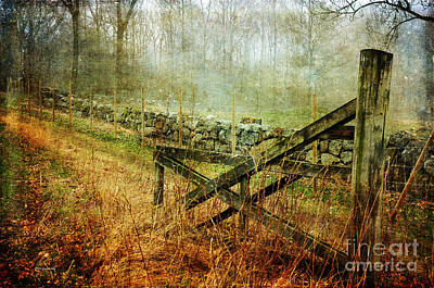 Photograph - Open Gate by Randi Grace Nilsberg