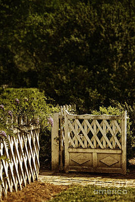 Painted Garden Gate Photograph - Open by Margie Hurwich