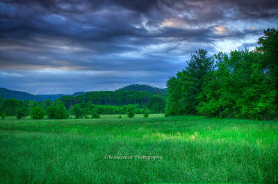 Open Pasture Art Print by Paul Herrmann