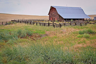 Photograph - Open Range by Athena Mckinzie