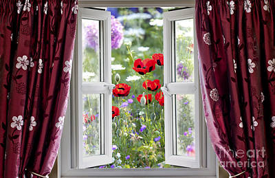 Open Window View Onto Wild Flower Garden Art Print by Simon Bratt Photography LRPS