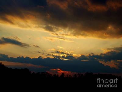 Photograph - Opening by Scott B Bennett
