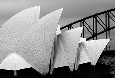 Dragon Photograph - Opera House Sydney by Alida Van Zaane