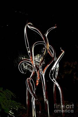 Glassart Photograph - Orange And Black Rainforest by Edna Weber