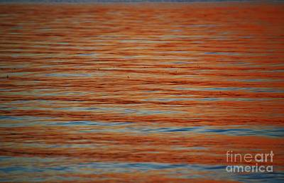 Photograph - Orange And Blue by Jennie Stewart