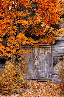 New England Fall Foliage Photograph - Orange And Gold Foliage Hide The Barn by Jeff Folger