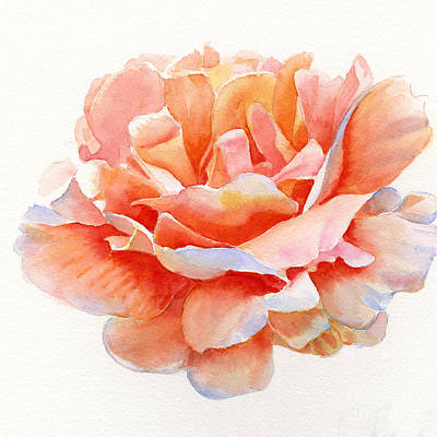 Pink Roses Painting - Orange And Gold Rose Square Design by Sharon Freeman