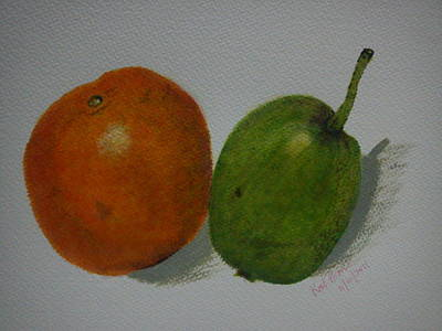 Painting - Orange And Pear by Kat Poon