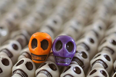 Skulls Photograph - Orange And Purple by Mike Herdering