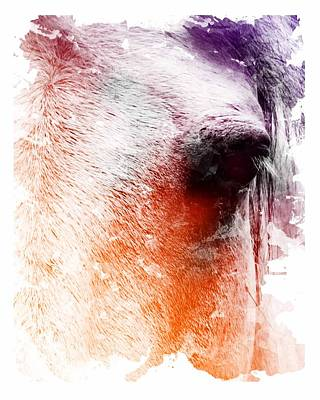 Digital Art - Orange And Violet Abstract Horse by Diana Shively