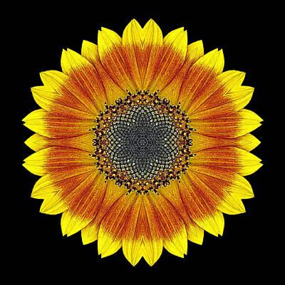 Print featuring the photograph Orange And Yellow Sunflower Flower Mandala by David J Bookbinder
