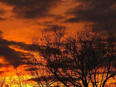 Photograph - Orange And Yellow Sunset by Gene Cyr