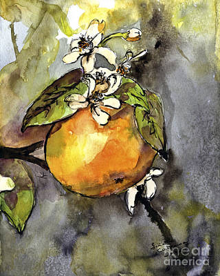 Orange Blossom Botanical Watercolor And Ink By Ginette Art Print