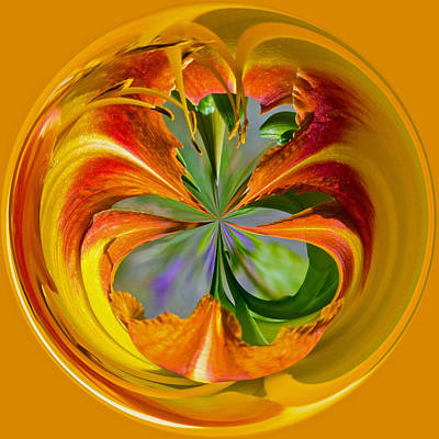Photograph - Orange Blossom Orb by Tikvah's Hope