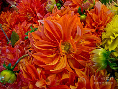 Orange Bouquet Art Print by Arlene Carmel