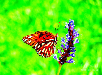 Photograph - Orange Butterly Against A Funky Green Background by Renee Trenholm