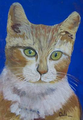 Painting - Orange Cat by Calliope Thomas