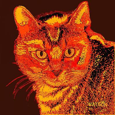 Digital Art - Orange Cat by Marlene Watson