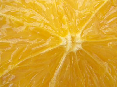 Photograph - Orange Closeup by Matthias Hauser