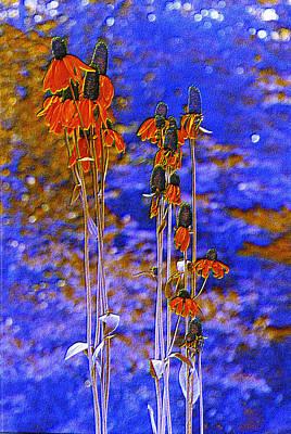 Orange Cones Art Print by Jan Amiss Photography