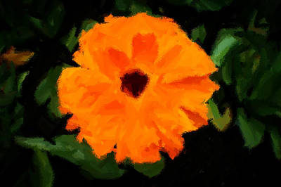 Painting - Orange Country Flowers - Impressionist Series by Doc Braham