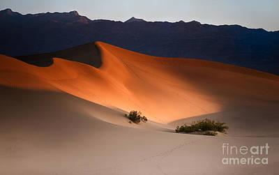 Death Valley Photograph - Orange Crush by Jennifer Magallon
