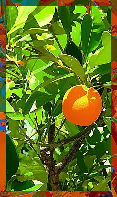 Fruit Tree Art Digital Art - Orange Crush by Mindy Newman