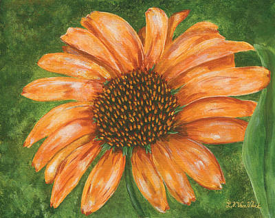 Painting - Orange Echinacea by Lucinda V VanVleck