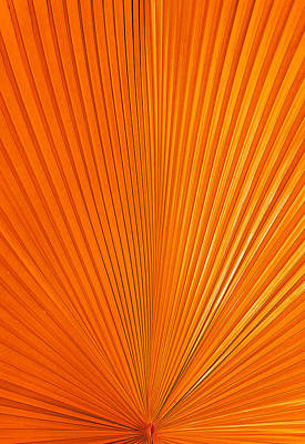 Photograph - Orange Energy by Sean Allen