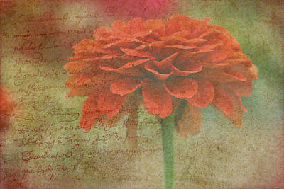 Photograph - Orange Floral Fantasy by Kay Novy