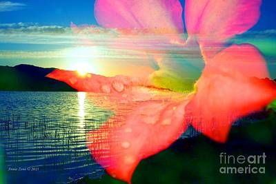 Photograph - Orange Flower And Sunset by Annie Zeno