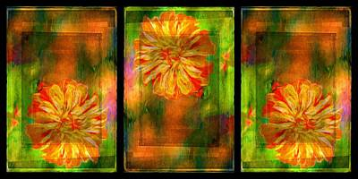 Photograph - Orange Flower Triptych by Alice Gipson