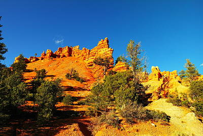 Orange Foreground A Blue Blue Sky  Art Print by Jeff Swan