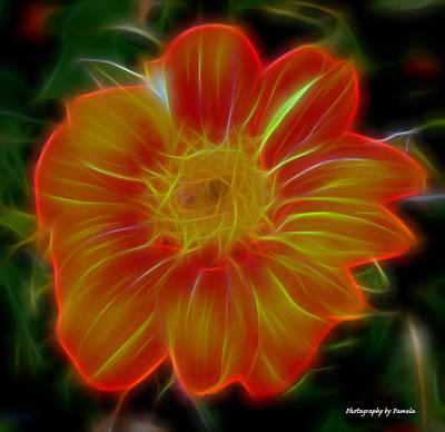 Mixed Media - Orange Glow by Pamela Walton