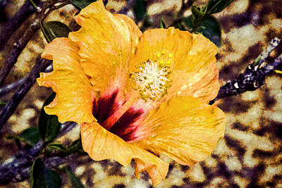 Digital Art - Orange Hibiscus by Photographic Art by Russel Ray Photos