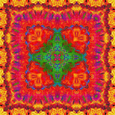 Digital Art - Orange Kaleidoscope by Charmaine Zoe