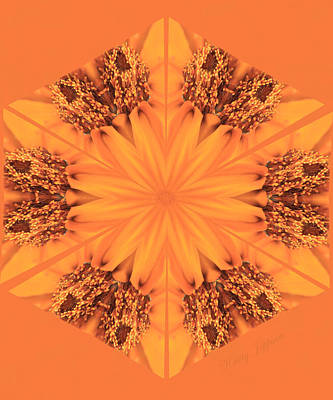 Photograph - Orange Kaleidoscope by Kristy Jeppson