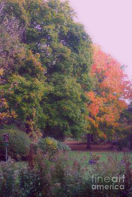 Frank J Casella Royalty-Free and Rights-Managed Images - Orange Leaves - Monet by Frank J Casella