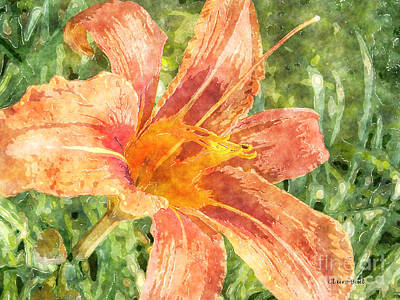 Painting - Orange Lily by Claire Bull