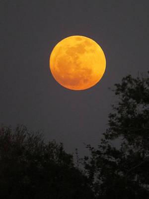 Skyscape Photograph - Orange Moon by Zina Stromberg