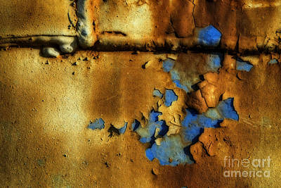 Photograph - Orange On Blue by David Waldrop
