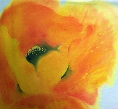 Painting - Orange Oriental Poppy by Shan Ungar