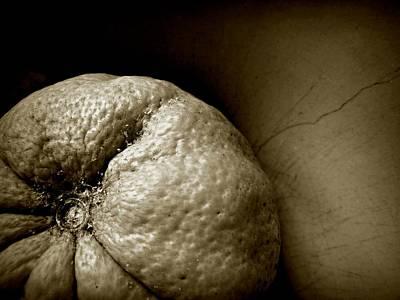 Photograph - Orange by Patricia Strand