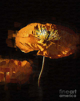 Digital Art - Orange Poppies One by Kirt Tisdale