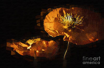 Digital Art - Orange Poppies Two by Kirt Tisdale
