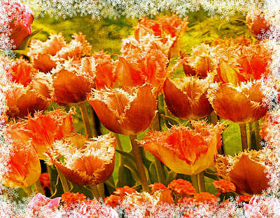 Tulips For Mom Photograph - Orange Princess Fringed Tulips by Debra  Miller