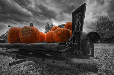 Shelburne Falls Photograph - Orange Pumpkins by Mike Horvath