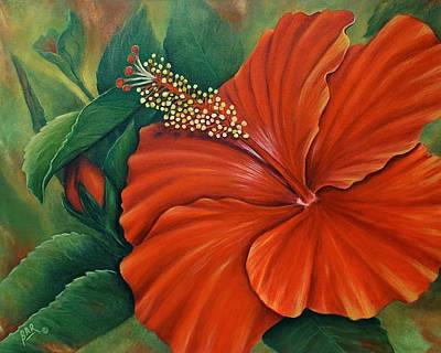 Through The Viewfinder - Orange-Red Hibiscus by Barbara Ann Robertson