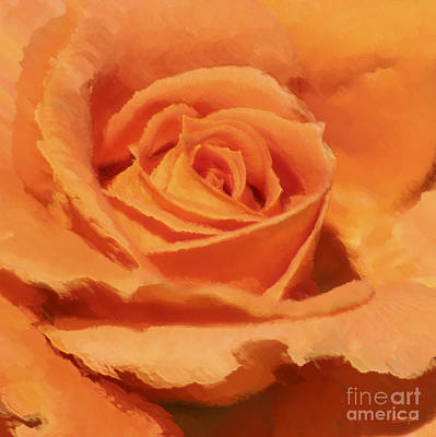 Digital Art - Orange Rose by Johnny Hildingsson